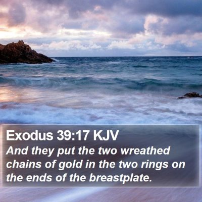 Exodus 39:17 KJV Bible Verse Image