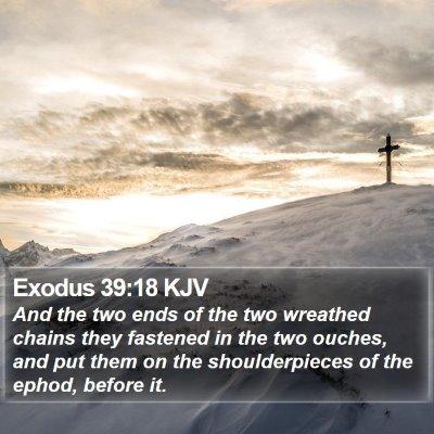 Exodus 39:18 KJV Bible Verse Image