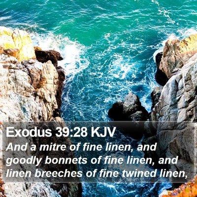 Exodus 39:28 KJV Bible Verse Image
