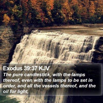 Exodus 39:37 KJV Bible Verse Image
