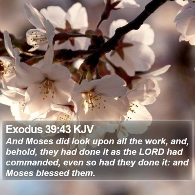 Exodus 39:43 KJV Bible Verse Image