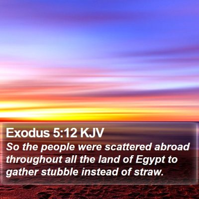 Exodus 5:12 KJV Bible Verse Image