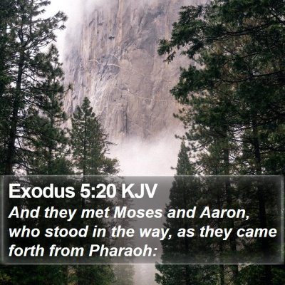 Exodus 5:20 KJV Bible Verse Image