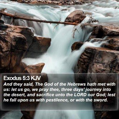 Exodus 5:3 KJV Bible Verse Image
