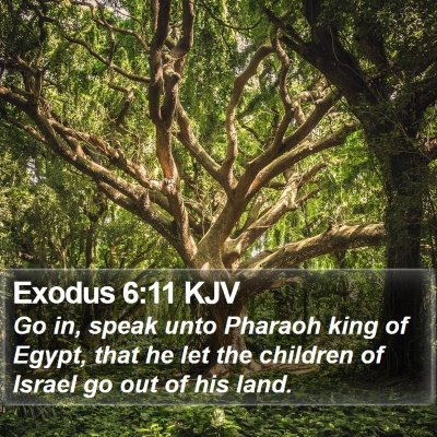 Exodus 6:11 KJV Bible Verse Image