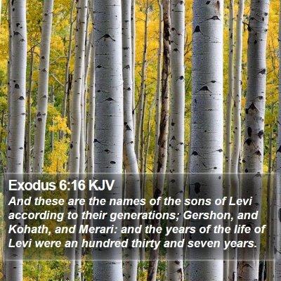 Exodus 6:16 KJV Bible Verse Image