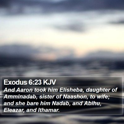 Exodus 6:23 KJV Bible Verse Image