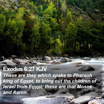 Exodus 6:27 KJV Bible Verse Image