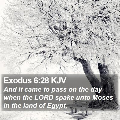 Exodus 6:28 KJV Bible Verse Image