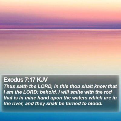 Exodus 7:17 KJV Bible Verse Image