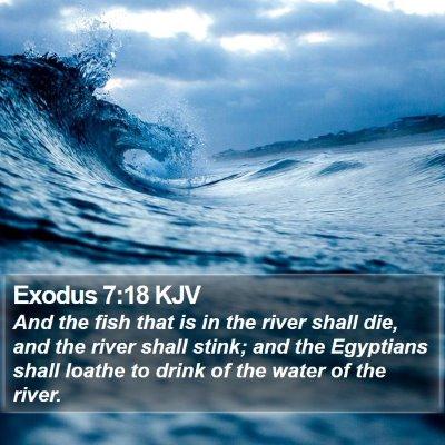 Exodus 7:18 KJV Bible Verse Image