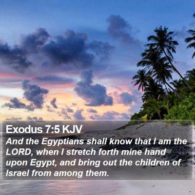 Exodus 7:5 KJV Bible Verse Image