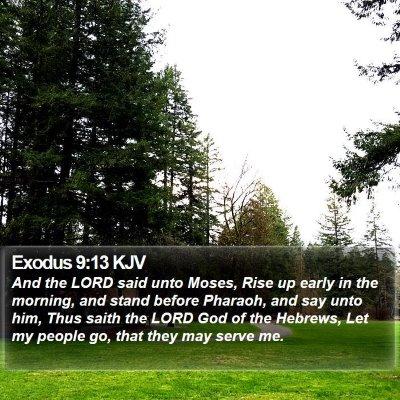 Exodus 9:13 KJV Bible Verse Image