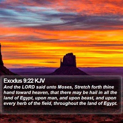 Exodus 9:22 KJV Bible Verse Image