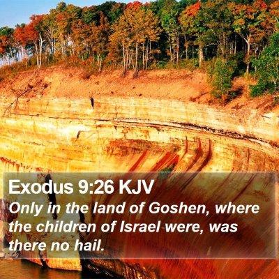 Exodus 9:26 KJV Bible Verse Image