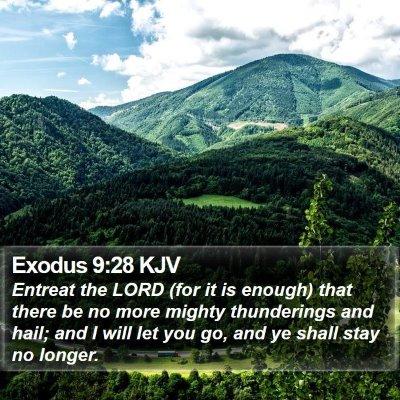 Exodus 9:28 KJV Bible Verse Image