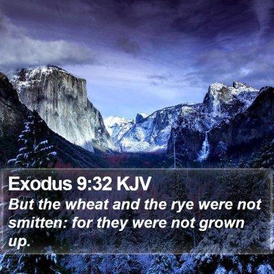 Exodus 9:32 KJV Bible Verse Image