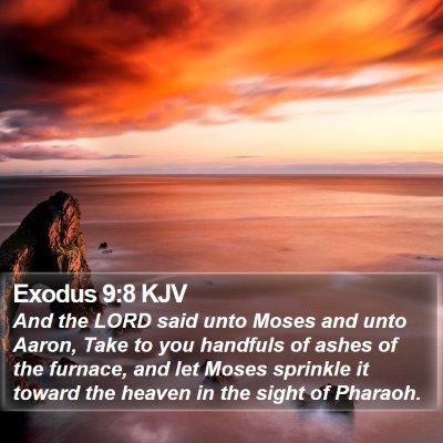 Exodus 9:8 KJV Bible Verse Image