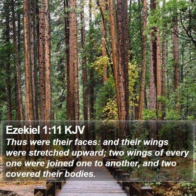 Ezekiel 1:11 KJV Bible Verse Image