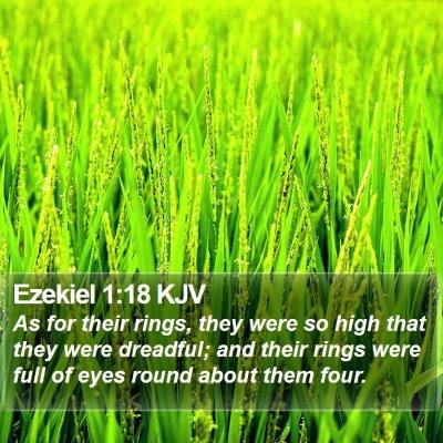 Ezekiel 1:18 KJV Bible Verse Image