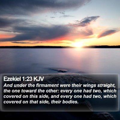 Ezekiel 1:23 KJV Bible Verse Image