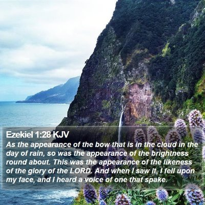 Ezekiel 1:28 KJV Bible Verse Image