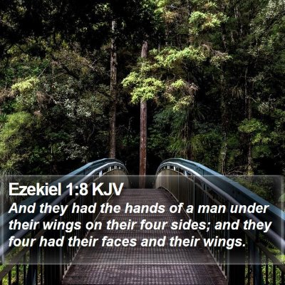 Ezekiel 1:8 KJV Bible Verse Image