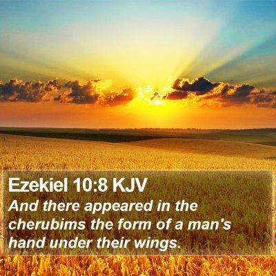 Ezekiel 10:8 KJV Bible Verse Image