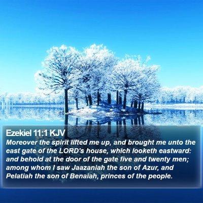 Ezekiel 11:1 KJV Bible Verse Image