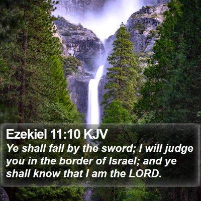 Ezekiel 11:10 KJV Bible Verse Image