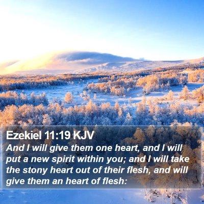 Ezekiel 11:19 KJV Bible Verse Image