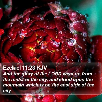 Ezekiel 11:23 KJV Bible Verse Image