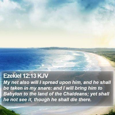 Ezekiel 12:13 KJV Bible Verse Image