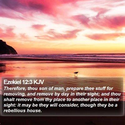 Ezekiel 12:3 KJV Bible Verse Image