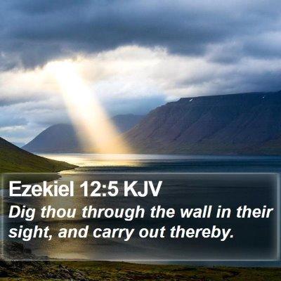 Ezekiel 12:5 KJV Bible Verse Image