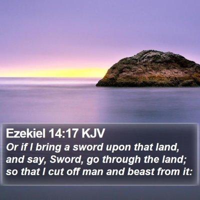 Ezekiel 14:17 KJV Bible Verse Image