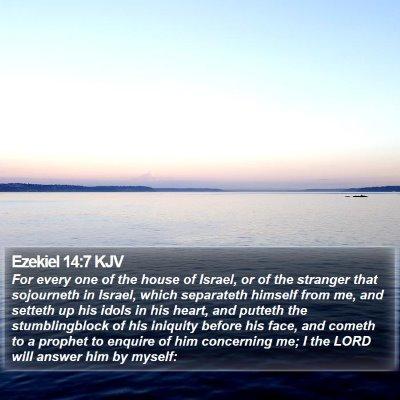 Ezekiel 14:7 KJV Bible Verse Image