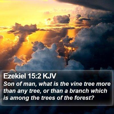 Ezekiel 15:2 KJV Bible Verse Image