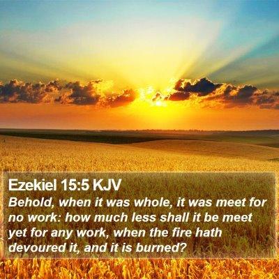 Ezekiel 15:5 KJV Bible Verse Image