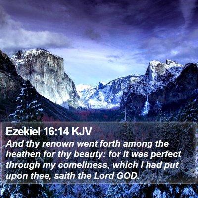 Ezekiel 16:14 KJV Bible Verse Image