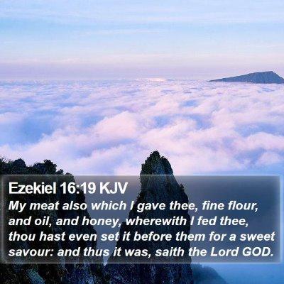 Ezekiel 16:19 KJV Bible Verse Image