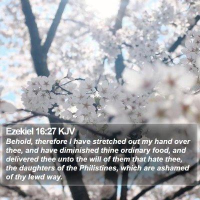 Ezekiel 16:27 KJV Bible Verse Image