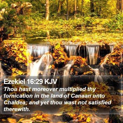 Ezekiel 16:29 KJV Bible Verse Image