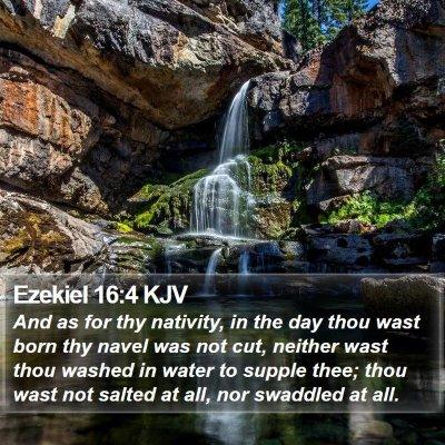 Ezekiel 16:4 KJV Bible Verse Image