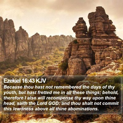 Ezekiel 16:43 KJV Bible Verse Image