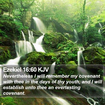 Ezekiel 16:60 KJV Bible Verse Image