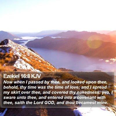 Ezekiel 16:8 KJV Bible Verse Image