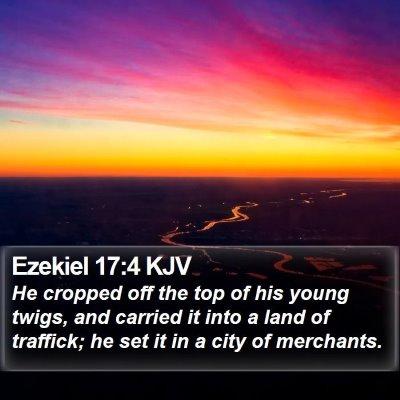 Ezekiel 17:4 KJV Bible Verse Image