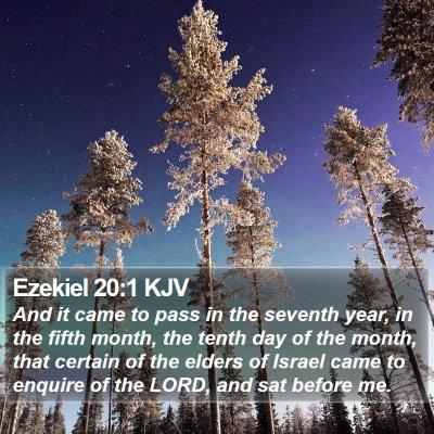 Ezekiel 20:1 KJV Bible Verse Image