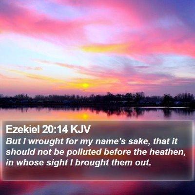 Ezekiel 20:14 KJV Bible Verse Image